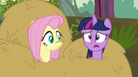 Twilight --I was so sure it would-- S5E23