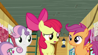 "Apple Bloom ""Didn't what?"" S6E4"