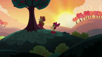 Apple Bloom -pretty crazy idea in the first place- S5E17