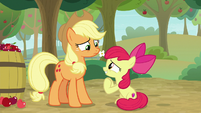 Apple Bloom pleading with Applejack S9E10