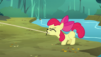 Apple Bloom pulling a rope S3E06