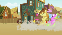 Earth ponies caught by a lasso S4E25