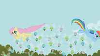 Fluttershy and Rainbow Dash herding Parasprites from above S01E10