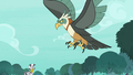 Giant roc hovering over Zecora S8E11.png