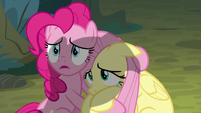 Pinkie and Fluttershy looking up at Twilight S8E13