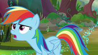 "Rainbow ""find a cragadile for a raft"" S8E17"