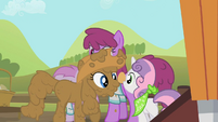 Rarity and Sweetie Belle carrying an egg S02E05