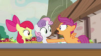"Scootaloo ""no way!"" S7E8"