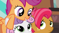 Scootaloo 'Seriously, we are gonna have a blast' S3E04