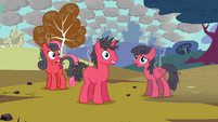 Sunburned ponies S03E13