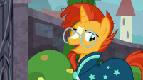 "Sunburst ""the great thing about home"" S8E8"