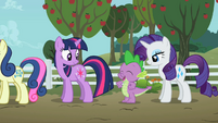 Twilight, Spike, And Rarity S2E15