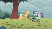 830px-Applejack and Rarity fighting over tree branch S1E8