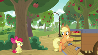 Apple Bloom hides behind a tree S9E10