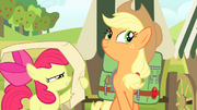Apple Bloom reading checklist S4E17