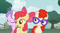 Apple Bloom where did you come from- S1E12