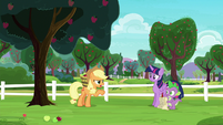 """Applejack """"if they ever apologized"""" S6E22"""