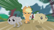 Applejack chasing after two bunnies S1E04