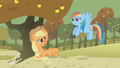 Applejack chewing hay S01E13.png