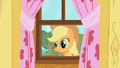 Applejack staring through window S01E18.png