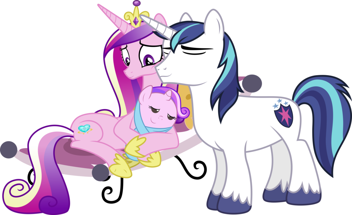 FANMADE Shining Armor Princess Cadence Request By Powerpuncher