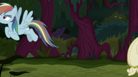 Fake Rainbow Dash flies off by herself S8E13