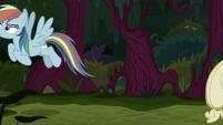 Fake Rainbow Dash flies off by herself S8E13