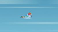Filly Rainbow Dash soars through the air S5E25