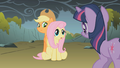 """Fluttershy """"because they're not dragons"""" S01E07.png"""