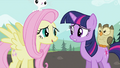 Fluttershy 'Maybe we'd better' S2E07.png