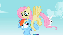 Fluttershy carrying Rainbow Dash S2E07