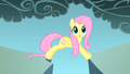 Fluttershy realizes the gap is not big S1E07.png