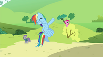Rainbow, Maud and Pinkie just before getting hit by a wave S4E18
