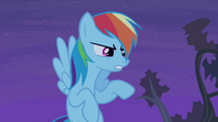 "Rainbow Dash ""you'll regret it!"" S4E07"