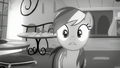 Rainbow a little surprised S5E15.png
