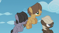 Young Boy Bullies watch Rainbow and Gilda S5E8.png