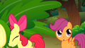 Apple Bloom passing a leaf S01E18.png