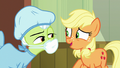 "Applejack ""save your voice for the big presentation!"" S6E23.png"