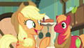 "Applejack ""we can ask Goldie Delicious!"" S7E13.png"