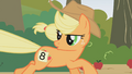 Applejack talks to Rainbow Dash S1E13.png