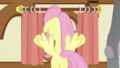 Fluttershy at the curtains S5E21.png