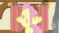 Fluttershy at the curtains S5E21