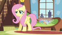 """Fluttershy confused by Seabreeze's """"pep talk"""" S4E16.png"""