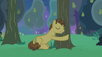 Grand Pear hugging his pear trees S7E13
