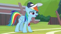 "Rainbow ""the biggest pony pyramid"" S9E15"