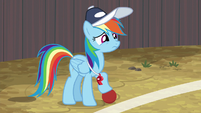 Rainbow Dash holding the buckball S9E6