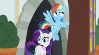 Rainbow and Rarity emerge from the tunnel S8E17