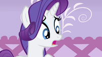 Rarity -what I thought you wanted- S4E19