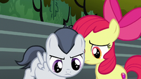 Rumble walking past Apple Bloom S7E21