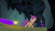 S03E06 Scootaloo nadal wierzy w istnienie bezgłowego konia